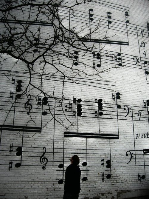 natos ant sienos